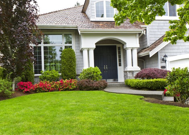 Why You Should Do Your Own Landscaping?